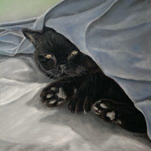 Meg Cat Pastel Portrait